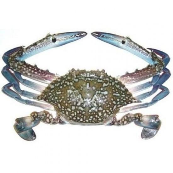 Sea Crabs/Kulli